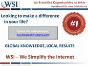 WSI Franchise Opportunities for Spain