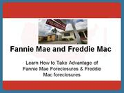 A Brief Explanation About Fannie Mae and Freddie Mac
