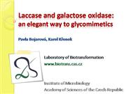 Laccase & galactose oxidase: way to glycomimetics