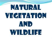 Natural Vegetation and wildlife