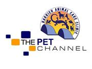 pet channel