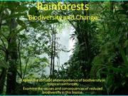 Rainforests2