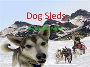 Dog Sleds by Erin Pelton