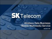 Wireless Data Business