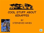 COOL STUFF ABOUT GIRAFFES
