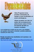 West Nile Posters Spanish