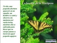 La Leccion de la Mariposa 2143