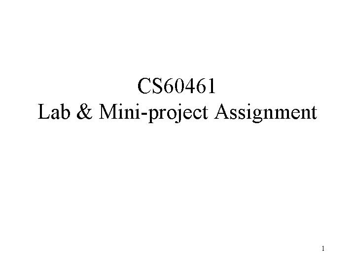 CS646 lab and mini project requirements 2007