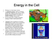 Energy in the Cell