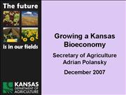 pp Bioeconomy Polansky Dec2007