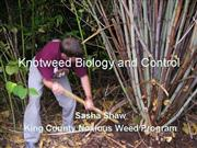 Knotweed Biology and Control