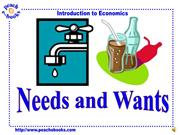 Wants and Needs PEN 2938