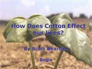How Does Cotton Effect our lives