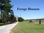 Forage Diseases