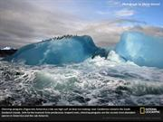 National Geographic Pictures Collection-Vol 3