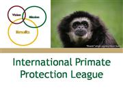 International Primate Protection Leauge