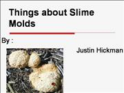 Justin's Mold Power Point