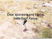 Dear sponsors and friends for the web