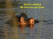 Wild Life of South Africa