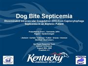 Dog bite sepsis