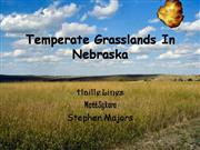 Temperate Grassland's In Nebraska