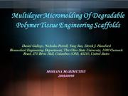 Multilayer Micromolding Of  Polymer scaffolds