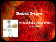 Skeletal System
