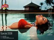 kingfisher_swimsuit_calendar_2008_bikini_