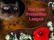 The cat's protection league