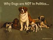 Why dogs are NOT in Politics